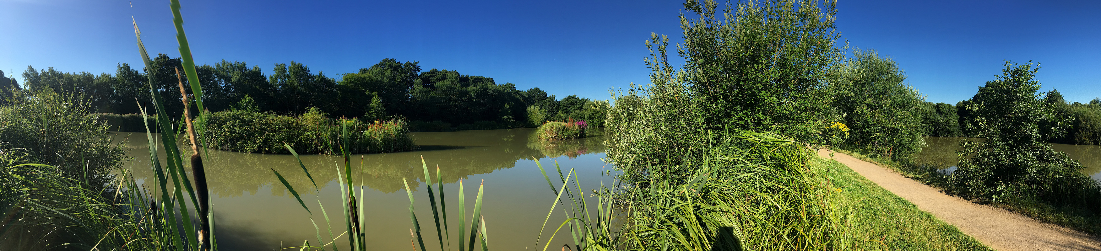 lake-02-orchard-place-farm-panorma
