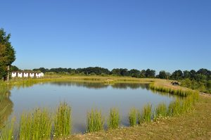 orchard-place-farm-lakes-11-01