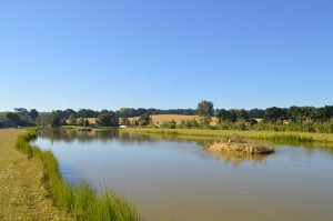 orchard-place-farm-lakes-silver-01